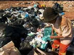Lixão da Estrutural tem parte que é considerada especial pelos catadores - Os catadores garimpam todo o lixo que chega em busca principalmente de materiais de limpeza e comida. Esses produtos foram descartados ou por estarem vencidos ou mal armazenados.
