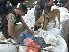 400 quilos de cocaína são apreendidos na BR-277 - Apreensão foi operação conjunta das forças policiais da fronteira e foi feita com ajuda de cães farejadores.