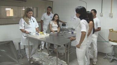 É possível castrar gratuitamente cães e gatos em Porto Velho - O serviço é executado por estudantes de medicina veterinária, de uma faculdade particular da Capital.