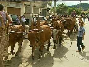 Desfile de carros de boi é atração em MG - Um desfile de carros de boi foi o destaque do último domingo (14) no município de Ipuiúna, no sul do estado de Minas Gerais. O barulho dos veículos é música para os ouvidos dos carreiros.