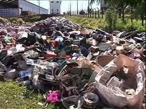 Dono de depósito de reciclados é preso por não ajudar no combate à dengue em Paranavaí - Foi a terceira prisão nesta semana