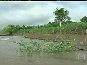 Chuva traz problemas para comunidades ribeirinhas do Rio Solimões, no Amazonas - Com a chuva, o nível da água da rio subiu e os agricultores lutam para salvar as plantações antes que as áreas fiquem alagadas. Alguns estão colhendo os produtos antes que amadureçam. Os animais também sofrem com as cheias.