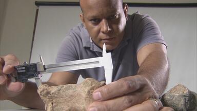 Seca revela fósseis de animais pré-históricos no Agreste de PE - Ossos foram descobertos em sítio de Caruaru.