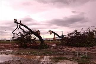 Chuva causa estragos em São Luís - Chuva causa estragos em São Luís