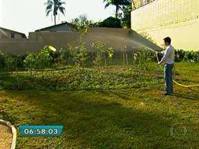Ambientalista mantém jardim de casa só com árvores típicas de São Paulo - Em uma área de apenas 250 metros quadrados e com um desenho sinuoso, como eram os capões paulistanos, o empresário e ambientalista Ricardo Cardim plantou 130 árvores de 45 espécies diferentes.