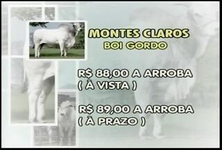 Arroba do boi sai por R$88 à vista em Montes Claros - Arroba do boi sai por R$88 à vista em Montes Claros.