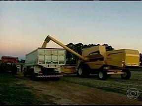 Produtores gaúchos de soja esperam o melhor momento para vender os grãos - O preço da soja está subindo. No Rio Grande do Sul, os produtores rurais que têm o produto guardado esperam o melhor momento para vender os grãos.