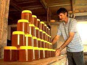 Apicultores preparam colmeias para enfrentar o inverno no RS - Oferta de néctar diminui nesta época do ano.