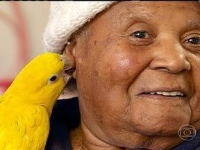 Aves ajudam na terapia de idosas com sintomas de depressão - Autorizadas pelo Ibama, as aves foram treinadas para serem terapeutas e ajudar no tratamento de idosas. Brincando com os animais, as idosas trabalham os sentidos do corpo, como o tato e a visão.