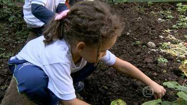Creche com atendimento a 80 crianças precisa de doações - Instituição fica no bairro Ipiranga, em Belo Horizonte.