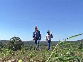 Fazendeiros e indígenas convivem pacificamente na região sul de MS - No sul de Mato Grosso do Sul, convivência pacífica parece ter sido o melhor caminho para índios e fazendeiros em Antônio João.