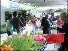 'Expô verde Flor' tem mais de 200 espécies de flores em Divinópolis, MG - Exposição começou neste sábado (20) e são esperadas 20 mil pessoas.Flores podem ser compradas a preços que variam de R$ 2 até R$ 135.