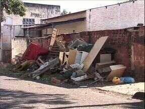 Apesar do risco de dengue, moradores insistem em jogar lixo nas ruas de Paranavaí - Quem for flagrado jogando lixo na rua pode pagar multa de no mínimo R$ 200,00. A Vigilância em Saúde vai intensificar a fiscalização.