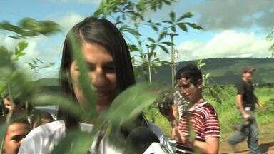 Estudantes da rede pública reflorestam área de caatinga em Traipu - O quadro Nosso Ambiente desta semana vai até a cidade de Traipu para mostrar como estudantes de 17 anos desenvolvem ações de preservação ambiental.