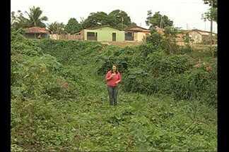 Cratera em Paragominas preocupa moradores - Buraco tem cerca de 10 anos e já fez duas ruas cederem.