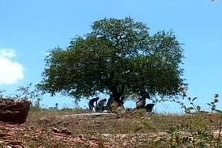 Cineasta escolheu Patos, PB, para gravar curta-metragem - Sertão paraibano vira plano de fundo para história de amor.