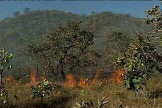 Bombeiros combatem incêndio que atinge Morro do Frota, em Pirenópolis - Desde terça-feira (20) o Corpo de Bombeiros tenta combater o fogo que atinge a reserva.