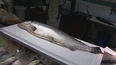 Levantamento aponta que o brasileiro ingere por ano menos peixe do que deveria - Levantamento aponta que o brasileiro ingere por ano menos peixe do que deveria