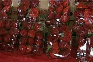 Saiba como economizar ao comprar frutas nas feiras em Goiânia - As frutas da época, como o morango, geralmente têm preços e qualidade melhores.