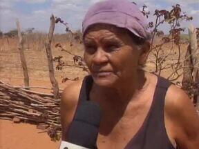Produtores rurais de Picos sofrem com a seca há dois anos - Produtores rurais de Picos sofrem com a seca há dois anos