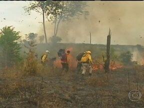 Incêndio atinge reserva indígena no Nordeste do Mato Grosso - Fogo atingiu áreas de mata, pastos e plantações. A Funai suspeita que posseiros - que foram obrigados a desocupar a terra indígena no começo do ano - tenham provocado o incêndio.