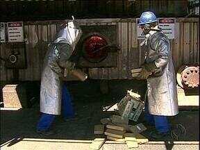 Quase 2 toneladas de drogas foram incineradas em Maringá - A drogas foram apreendidas pela polícia na região