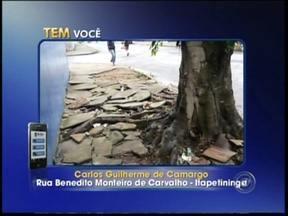 Problemas em calçadas são registrados por telespectadores da região de Itapetininga, SP - Moradores de Itapetininga (SP) e Paranapanema (SP) enviaram, através do aplicativo TEM Você, fotos de calçadas esburacadas e lajotas soltas.