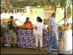 Divinópolis realiza primeira feira de produtores rurais da região - Evento acontece no Parque de Exposições. Programação traz apresentações culturais e comidas típicas até às 22h.