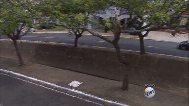 Córrego de avenida de Franca é alvo de acidentes - Córrego Cubatão não possui proteção metálica