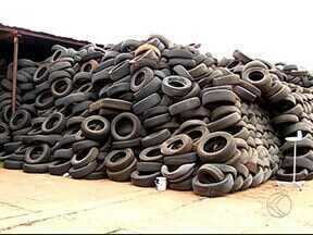 Artista plástica de Uberlândia ensina como aproveitar pneus para fazer móveis - Um pneu leva cerca de 600 anos para se decompor na natureza.