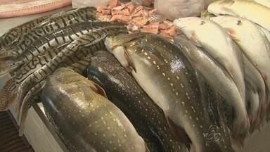 Em Manaus, variedade de peixes enriquece gastronomia na região - Reportagem especial do aniversário de Manaus mostra características da região.