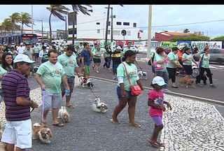 'Cãominhada' é promovida em Aracaju - Objetivo foi alertar a sociedade para o abandono contra os bichos.