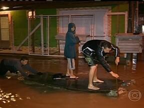 Temporal prejudica milhares de pessoas em Porto Alegre - Num bairro de Porto Alegre, a água bate na altura da canela e continua chovendo. No campo, cerca de dois mil produtores de fumo viram a chuva inundar e destruir as lavouras.