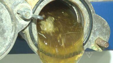 Veja como funciona a produção do mel orgânico - Procura por produtos orgânicos aumenta a cada dia.