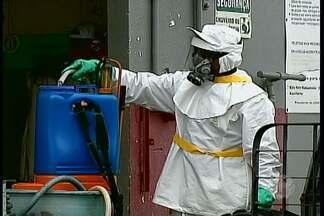 Mau uso de agrotóxicos podem causar problemas à saúde - O veneno é usado no combate às pragas nas plantações
