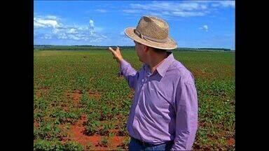Avião agrícola despeja veneno em fazendas de MT sem autorização - Avião agrícola despeja veneno em fazendas de MT sem autorização.