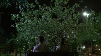Rafael e Linda armam uma árvore de Natal na praça - O advogado compra frutas para a decoração e estimula a criatividade da garota