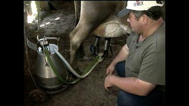 Aumentar o volume e manter a qualidade do leite é o principal desafio dos produtores no RS - Atividade está presente em 93% dos municípios gaúchos.