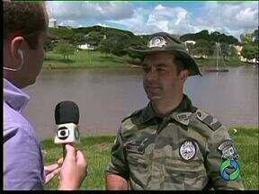 17 pessoas presas na Operação Verão da Polícia Militar Ambiental - Armas, pássaros e cigarros já foram apreendidos.