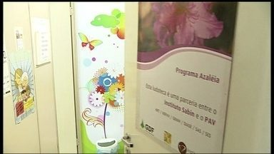 Programa do Hospital Regional de Taguatinga atende vítimas e agressores - Em 2013, especialistas do Programa Azaleia atendeu mais de 650 vítimas de violência física ou psicológica. Os agressores também fazem terapia.