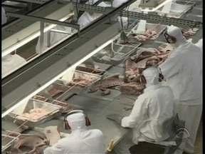 Governo de SC calcula que exportação de carne suína chegue a 80 mil toneladas em 2014 - Governo de SC calcula que exportação de carne suína chegue a 80 mil toneladas em 2014