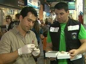 Exame de DNA é realizado em peixes vendidos em Florianópolis para evitar enganos - Exame de DNA é realizado em peixes vendidos em Florianópolis para evitar enganos
