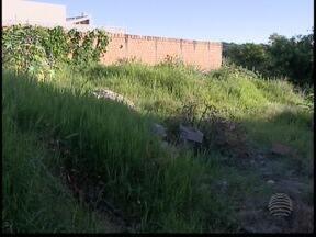 Prefeitura de Presidente Prudente notifica 23 mil donos de terrenos baldios - Secretaria de Planejamento se prepara para lançar multas para 5 mil proprietários.