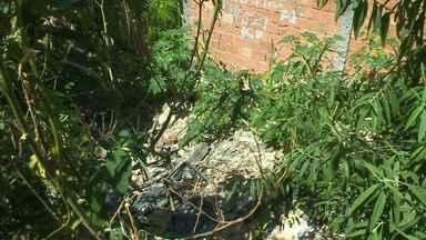 Parceiros mostram comunidade que sofre com falta de saneamento básico em Betim - Eles foram ao bairro Guanabara, para mostrar o problema.