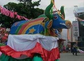 Arcoverde é passarela para o desfile de grupos da 'Folia dos Bois' - Agremiações se apresentam de formas diferenciadas a história dos bois.