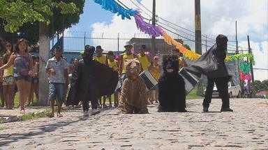 Camaragibe se despede do carnaval no ritmo dos trios elétricos e dos ursos - Urso da Boa Vista foi uma das atrações.