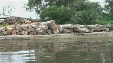 Operação do Ibama apreende madeira ilegal no AM - Ação é realizada no Sul do estado para coibir crimes.