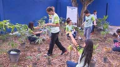 'Projeto Afra' incentiva preservação do meio ambiente, no AM - Ação é realizada no Nova Esperança, Zona Norte de Manaus.