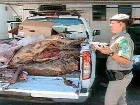 Operação da Patrulha Ambiental de Rio Grande, RS, apreende 400 kg de carne - Carnes haviam sido abatidas clandestinamente