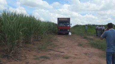 Polícia Civil investiga morte de motorista de caminhão e ajudante em Taquaritinga - Vítimas foram encontradas às margens de rodovia.